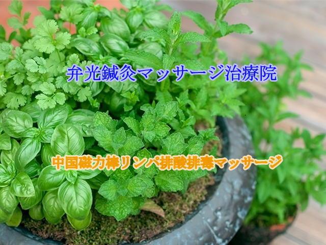 大阪の鍼灸マッサージ、エステティックサロンです。